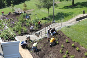 "2012 – Although preparation was several years in the making, the rain garden near the Ludlow parking garage was installed in early 2012. As part of the storm water management project funded by the Metropolitan Sewer District, the gardens help to reduce rain water runoff, and is just one of many environmentally sustainable or ""green"" projects at Cincinnati State."